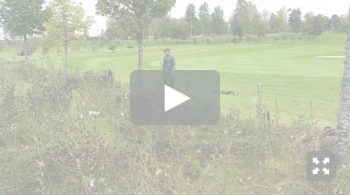 golfvett4