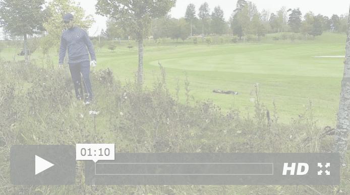 Golfregler - leta boll
